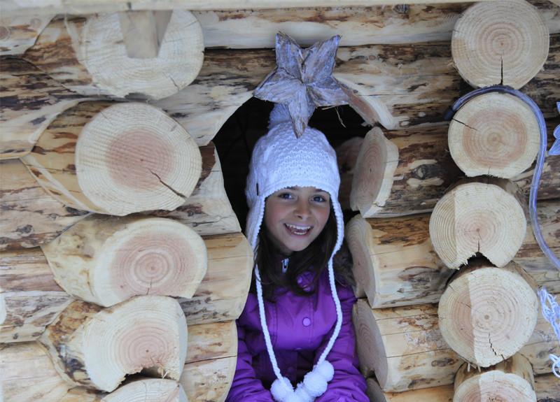 The Elfish Wood