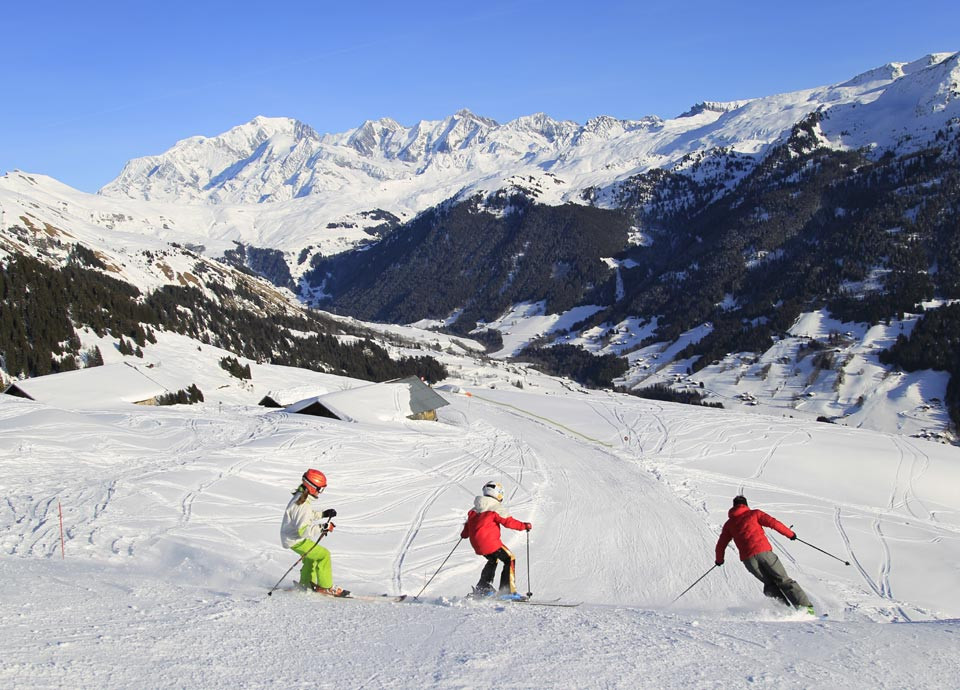 Alpineskiën