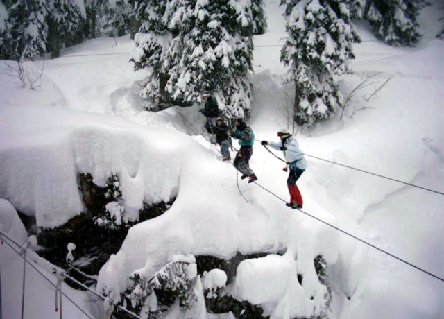 Treetop adventure / Orienteering course