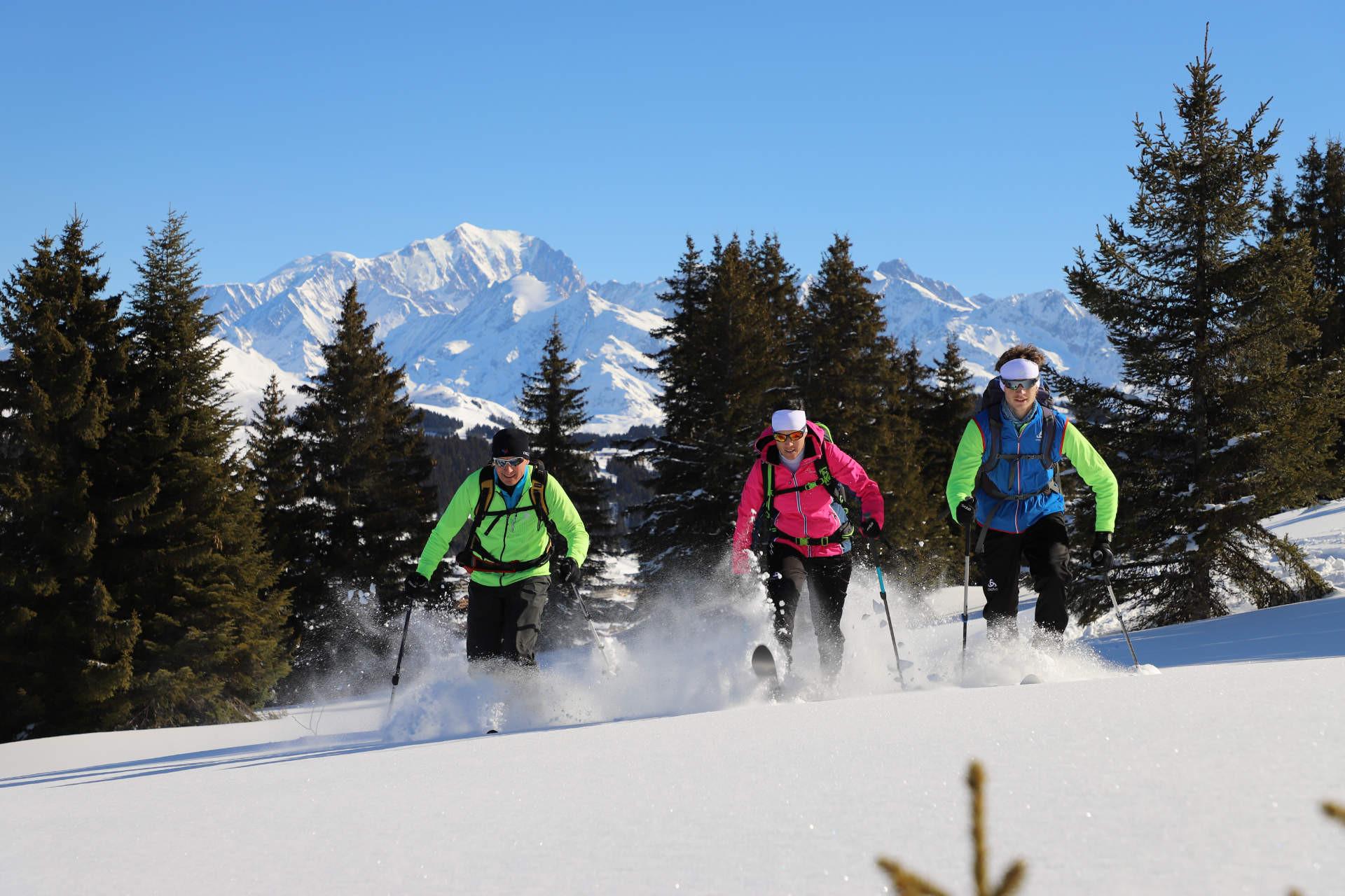 Skihoc (ski raquettes)