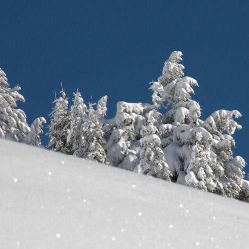 neige-garantie-1750