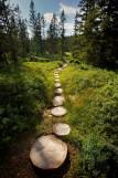 Sentier sur la flore des Tourbières