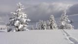 5456487-balade-au-pays-de-l-hiver-5462378