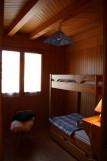 img-0085-drosera-800x600-2594150
