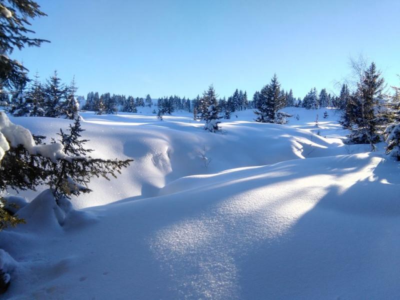 5456488-pays-de-l-hiver-1-5462379
