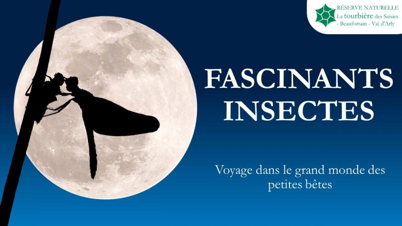 diaporama_insectes.jpg